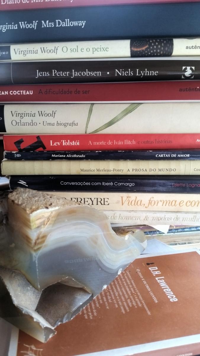 LIVROS e livros Virgínia Woolff