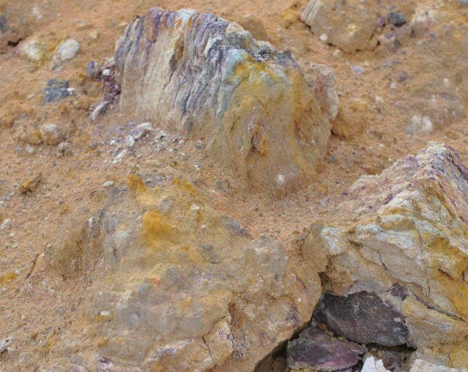 amei a rocha