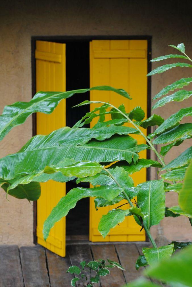 PORTA AMARELA com folhas