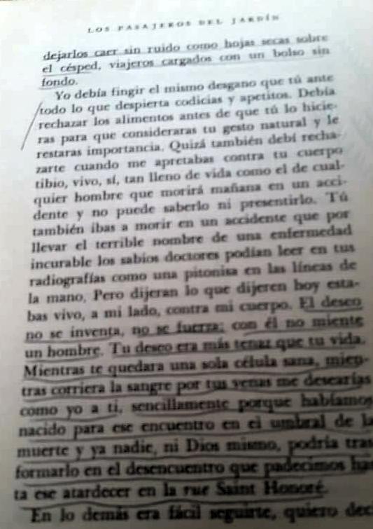 texto espanhol