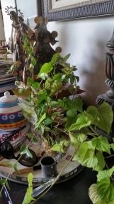 outra foto linda da mesa com ver da batata doce