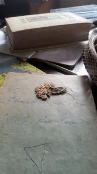 Capa do Caderno alfabetização