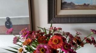 flores hoje