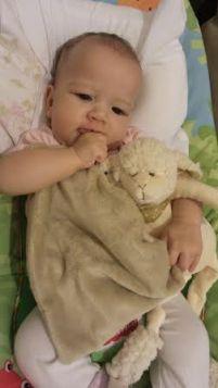 Valentina e a ovelha