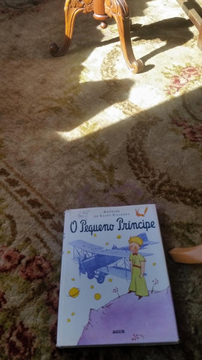 livro e tapete