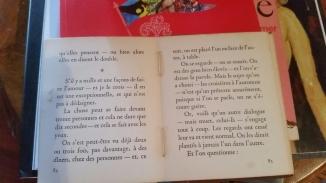 livro em francês aberto texto maravilha
