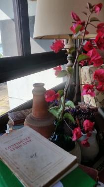 mesa buganvílea e livros linda