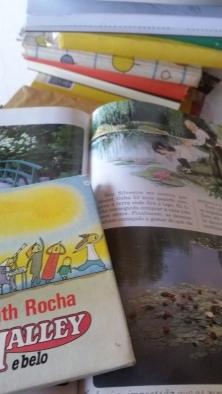 livros da luiza