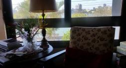 cadeira e flor