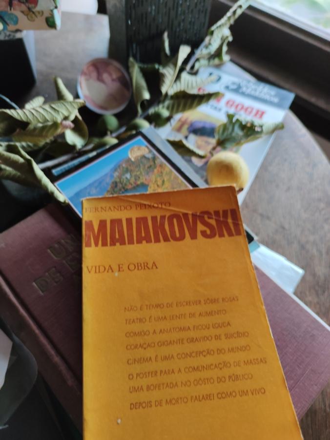 IMG_20200404_175332 maiakovski