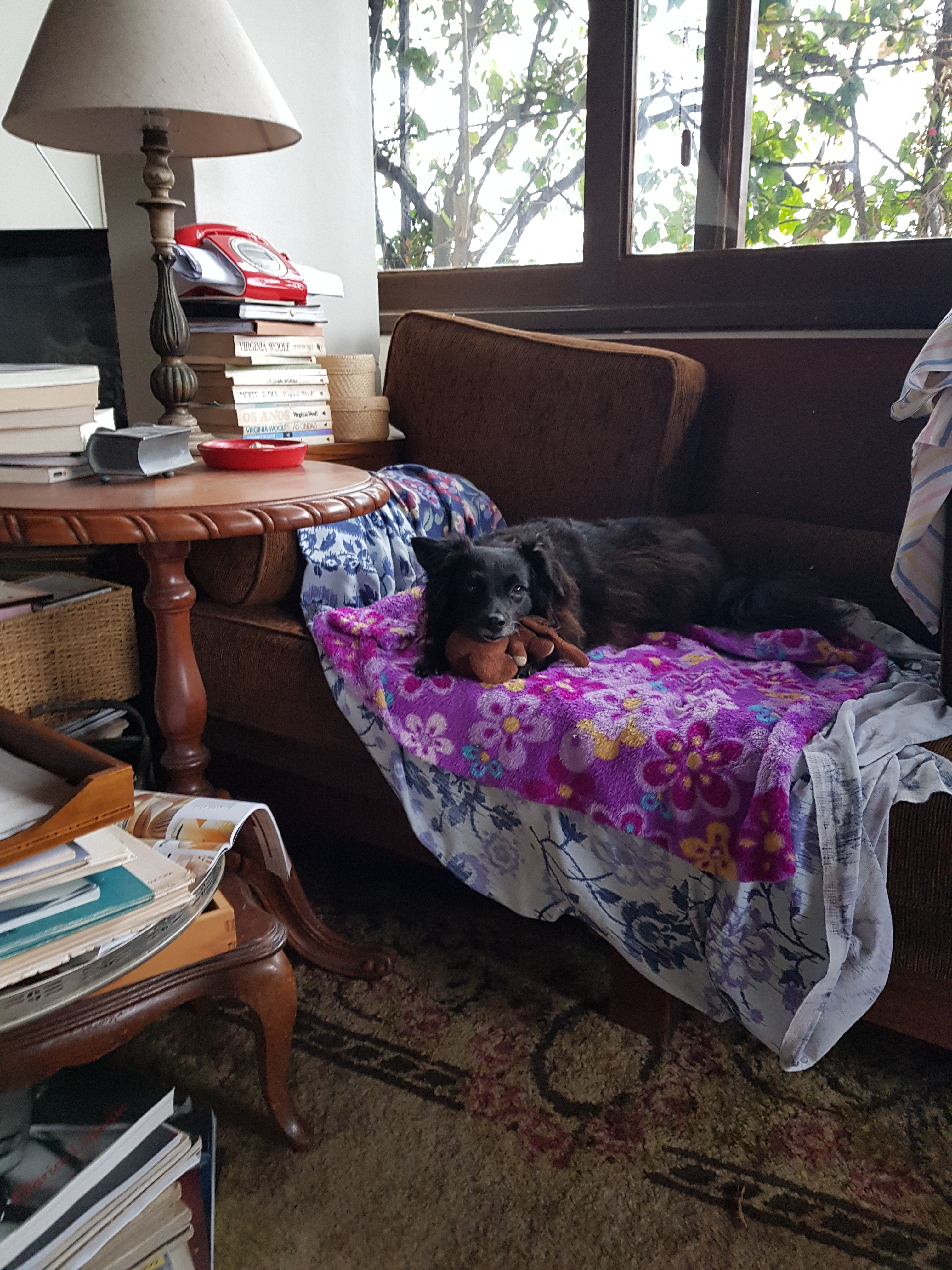 distraida no sofá Ônix